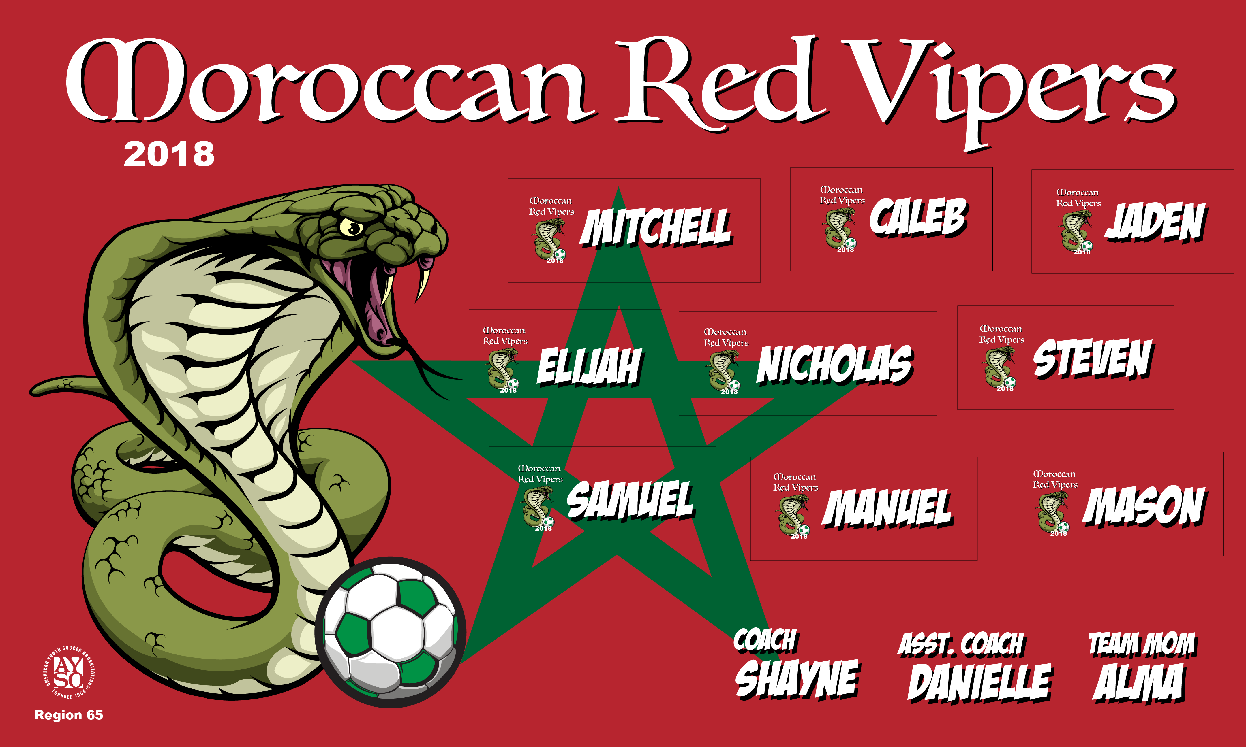 B2375 Moroccan Red Vipers 3x5 Banner