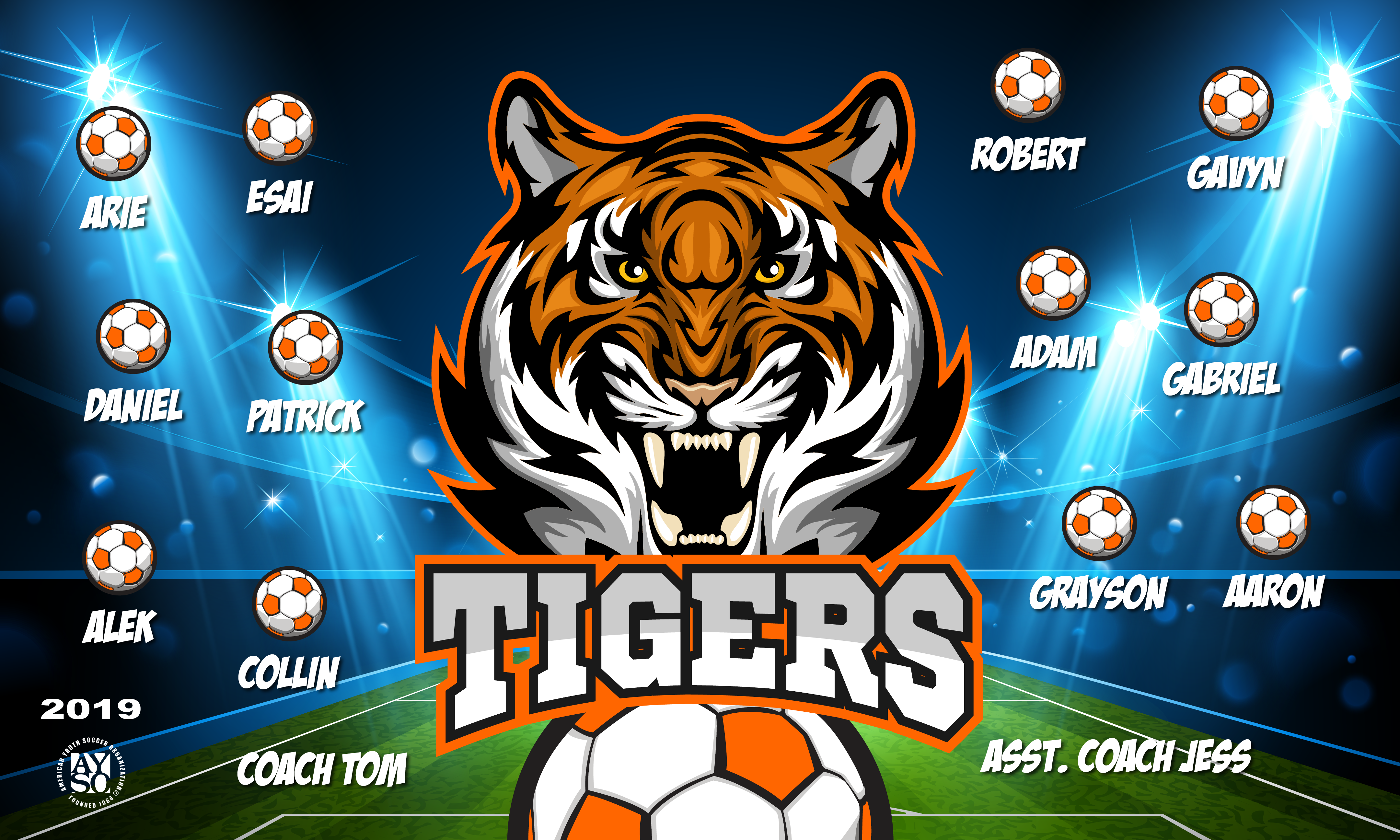 B2431 The Tigers 3x5 Banner