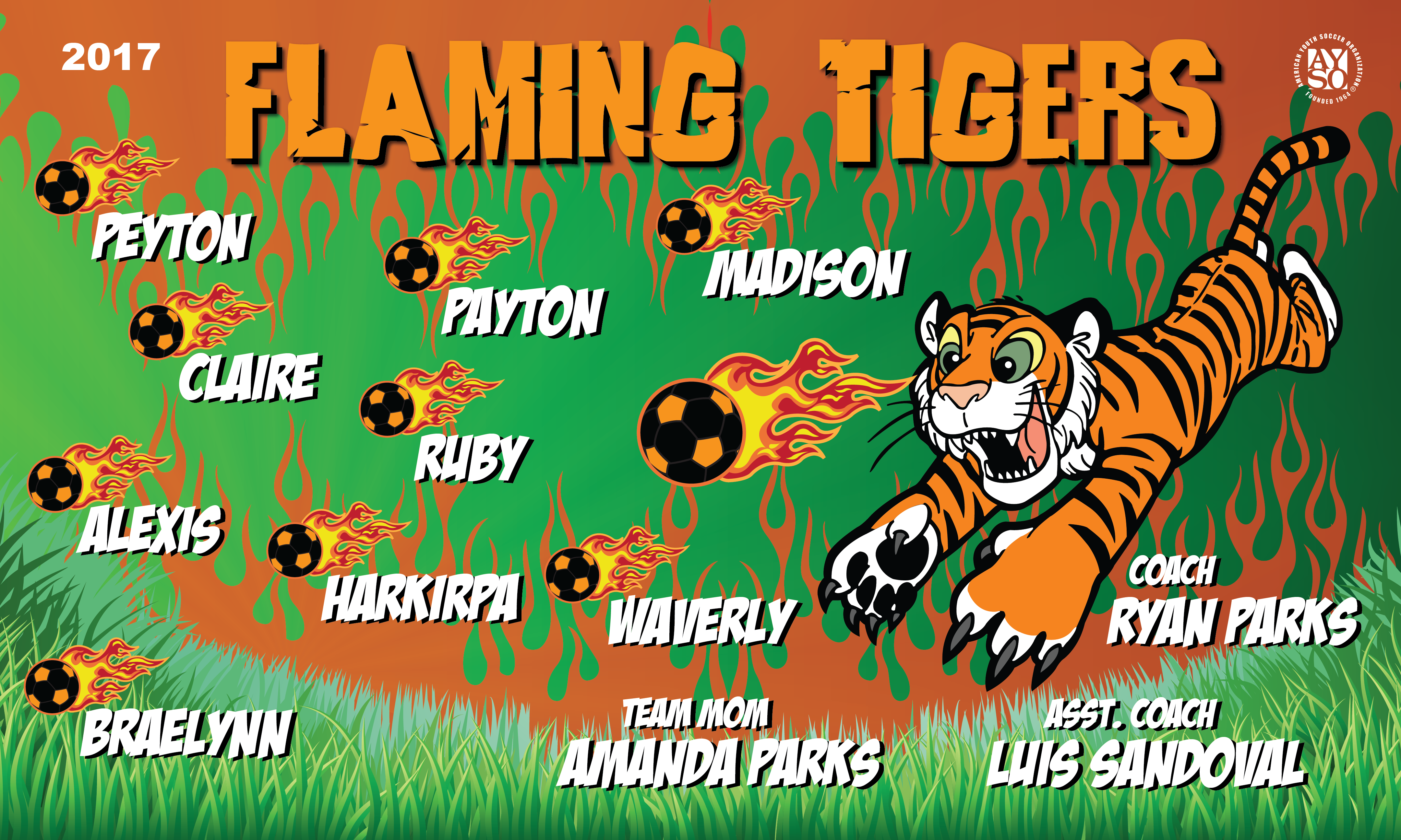 B2034 Flamming Tigers 3x5 Banner