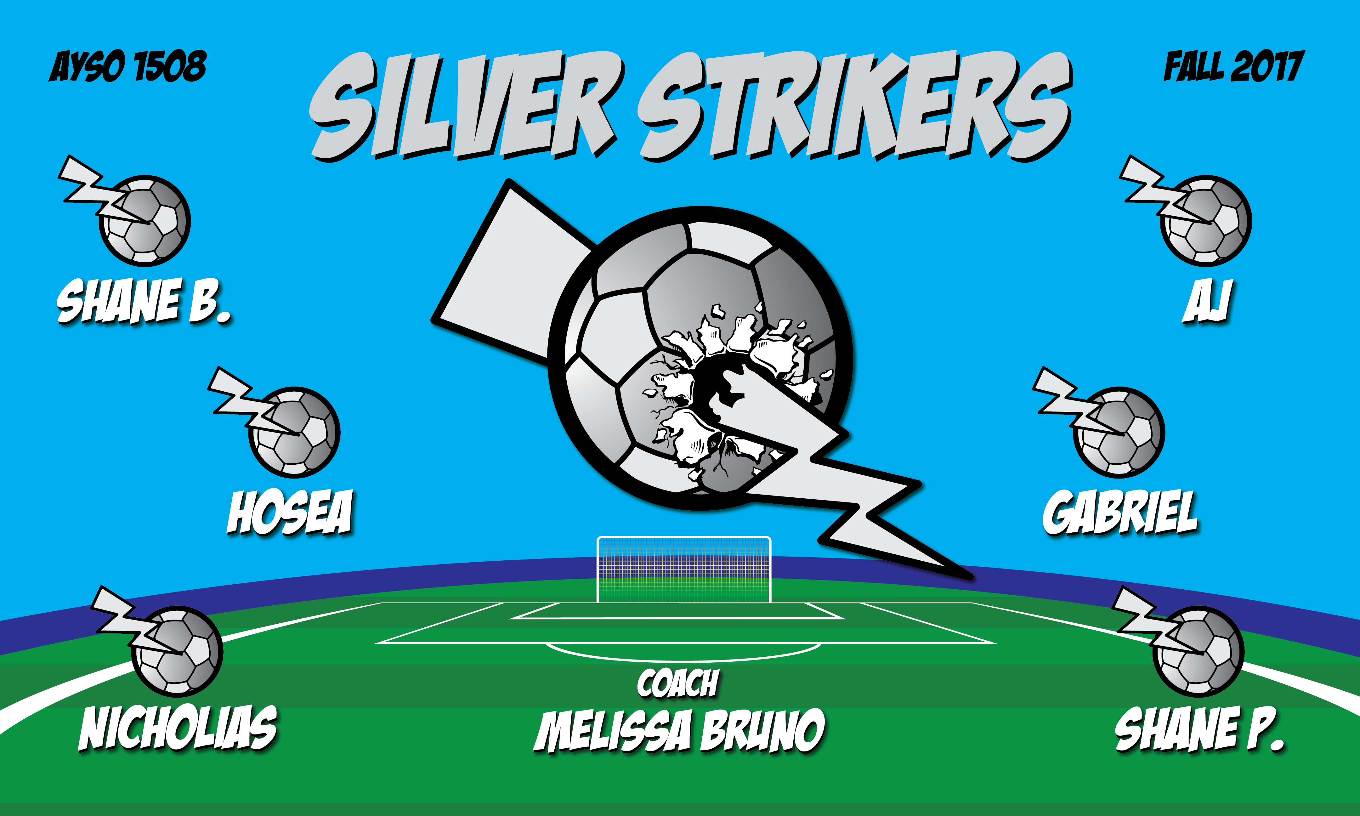 B2131 Silver Strikers 3x5 Banner