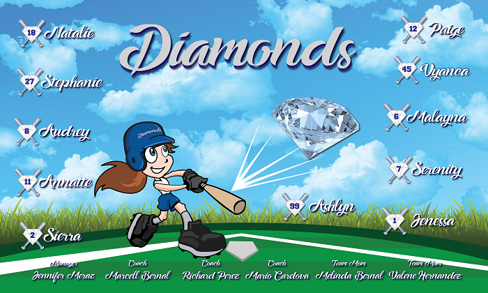 B2173 Diamonds 3x5 Banner