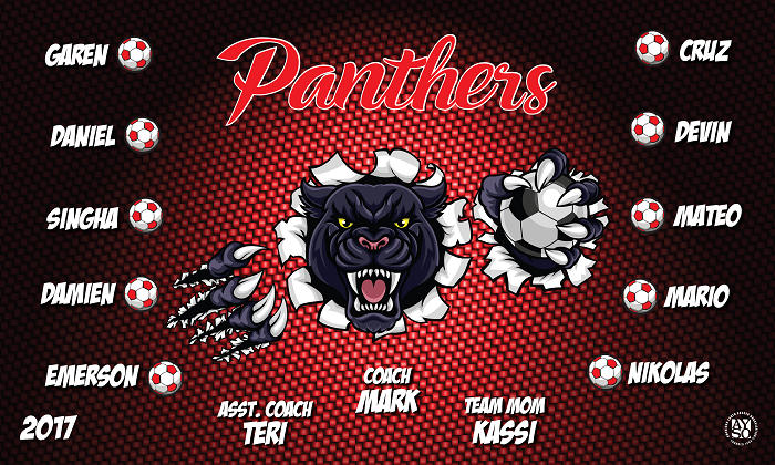 B2177 Panthers 3x5 Banner