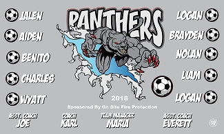 B2340 The Panthers 3x5 Banner