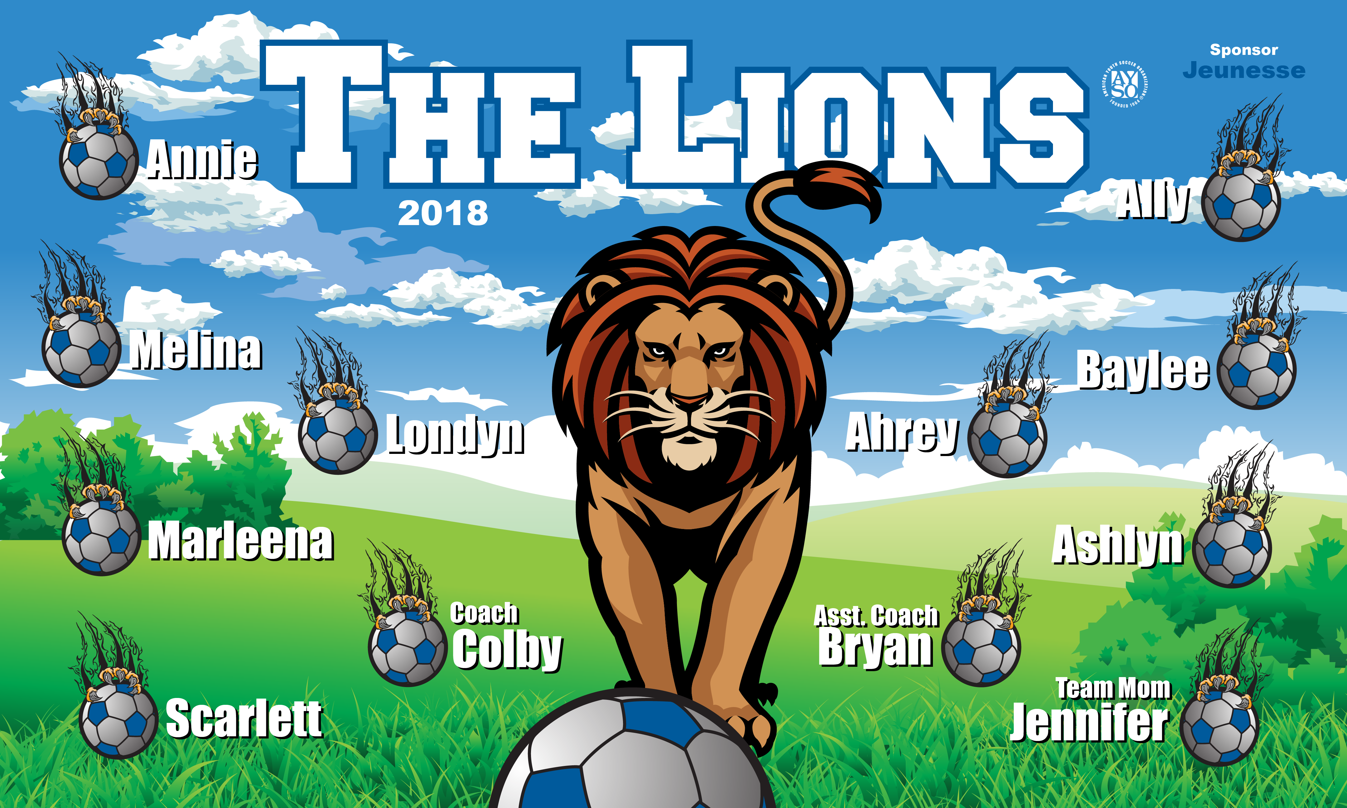 B2349 The Lions3x5 Banner