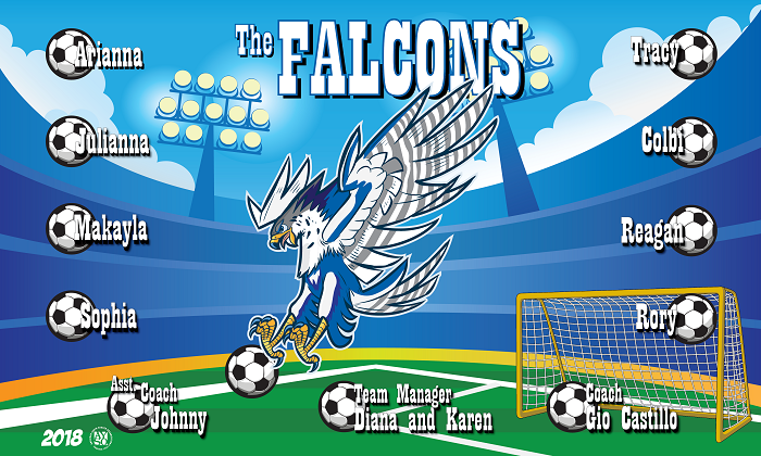 B2351 The Falcons 3x5 Banner