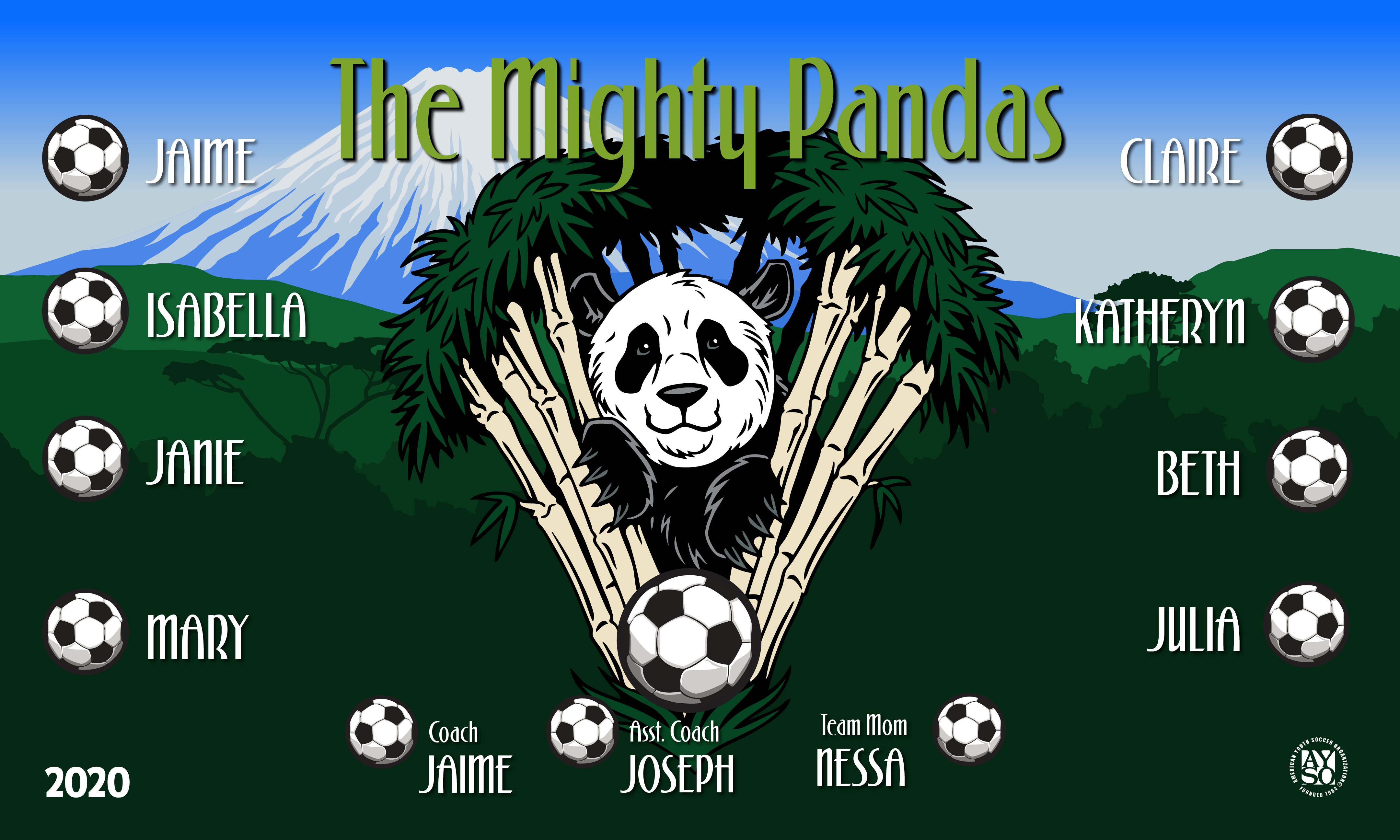 B2682 The Mighty Pandas 3x5 Banners