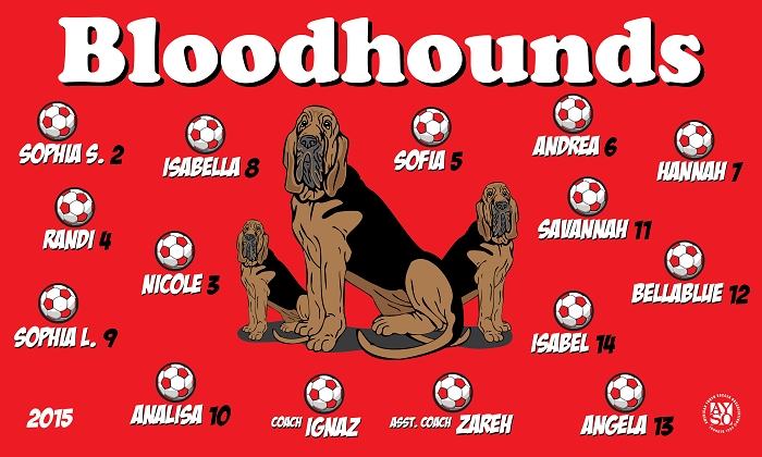 B1251 Bloodhounds 3x5 Banner