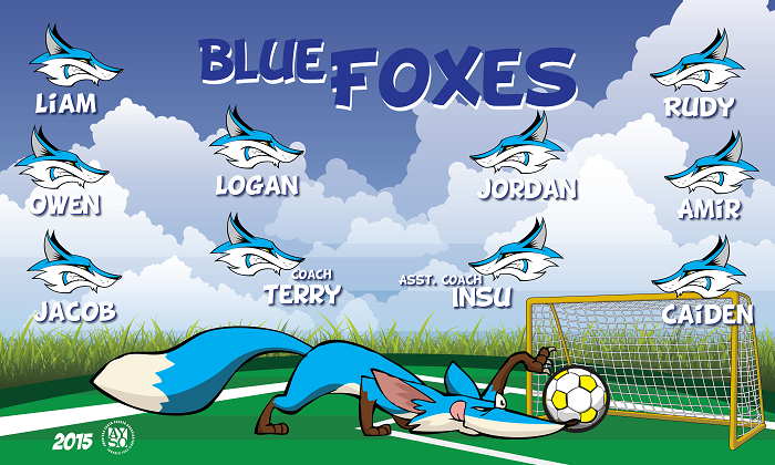B1254 Blue Foxes 3x5 Banner