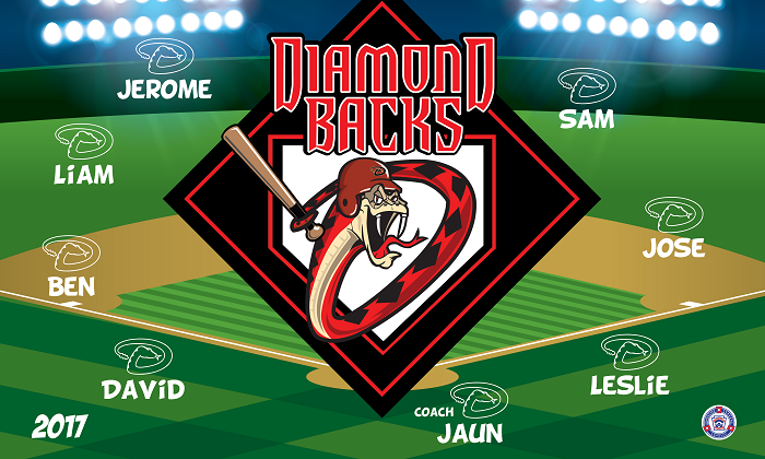 B1393 Diamond Backs 3x5 Banner