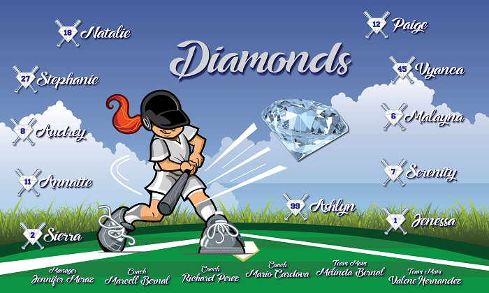 B2174 Diamonds 3x5 Banner