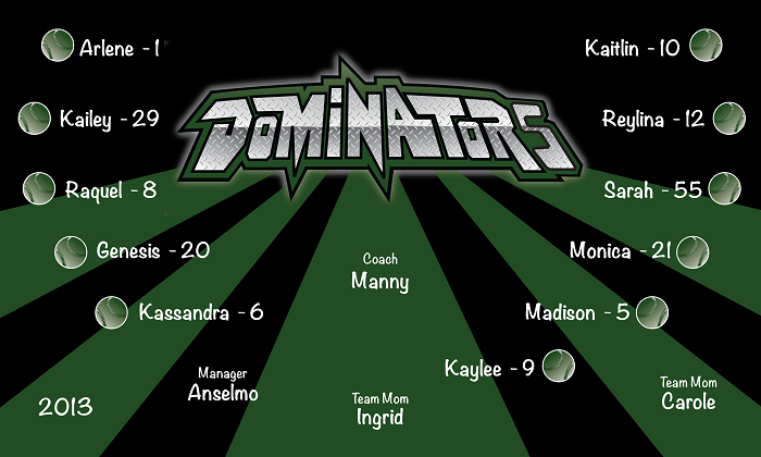 B1369 Dominators Baseball 3x5 Banner