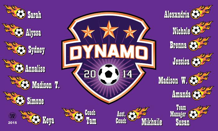B1496 Dynamo Shield 3x5 Banner B1496