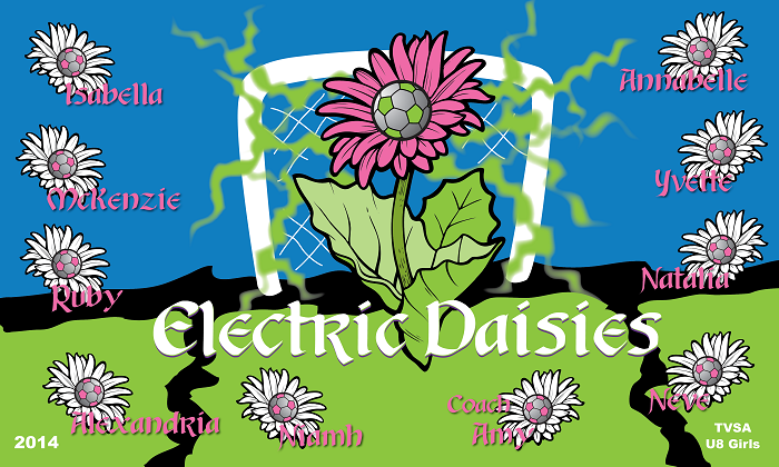 B1275 Electric Daisies 3x5 Banner