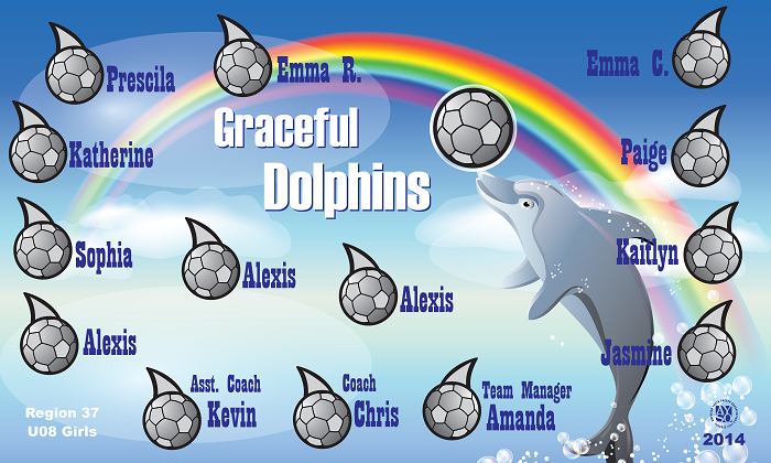 B1512 Graceful Dolphins 3x5 Banner