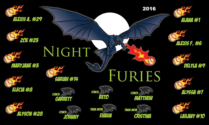 B1409 Night Furies Baseball 3x5 Banner