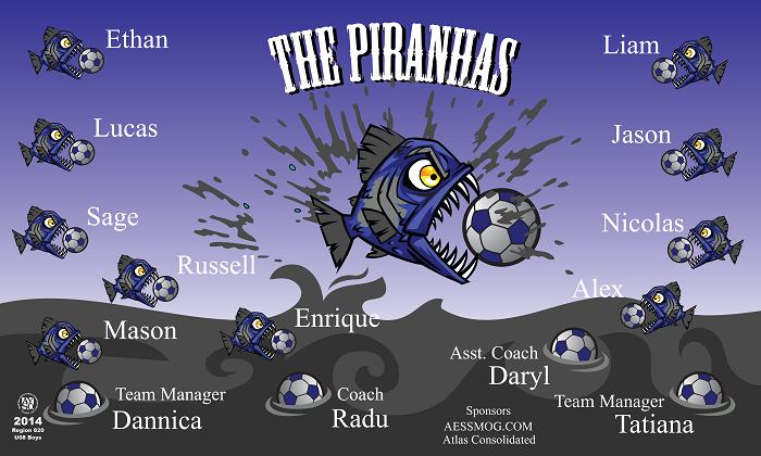 B1136 The Piranhas 3x5 Banner