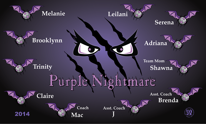 B1144 Purple Nightmare 3x5 Banner
