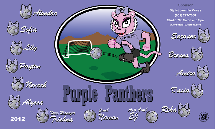 B1145 Purple Panthers 3x5 Banner