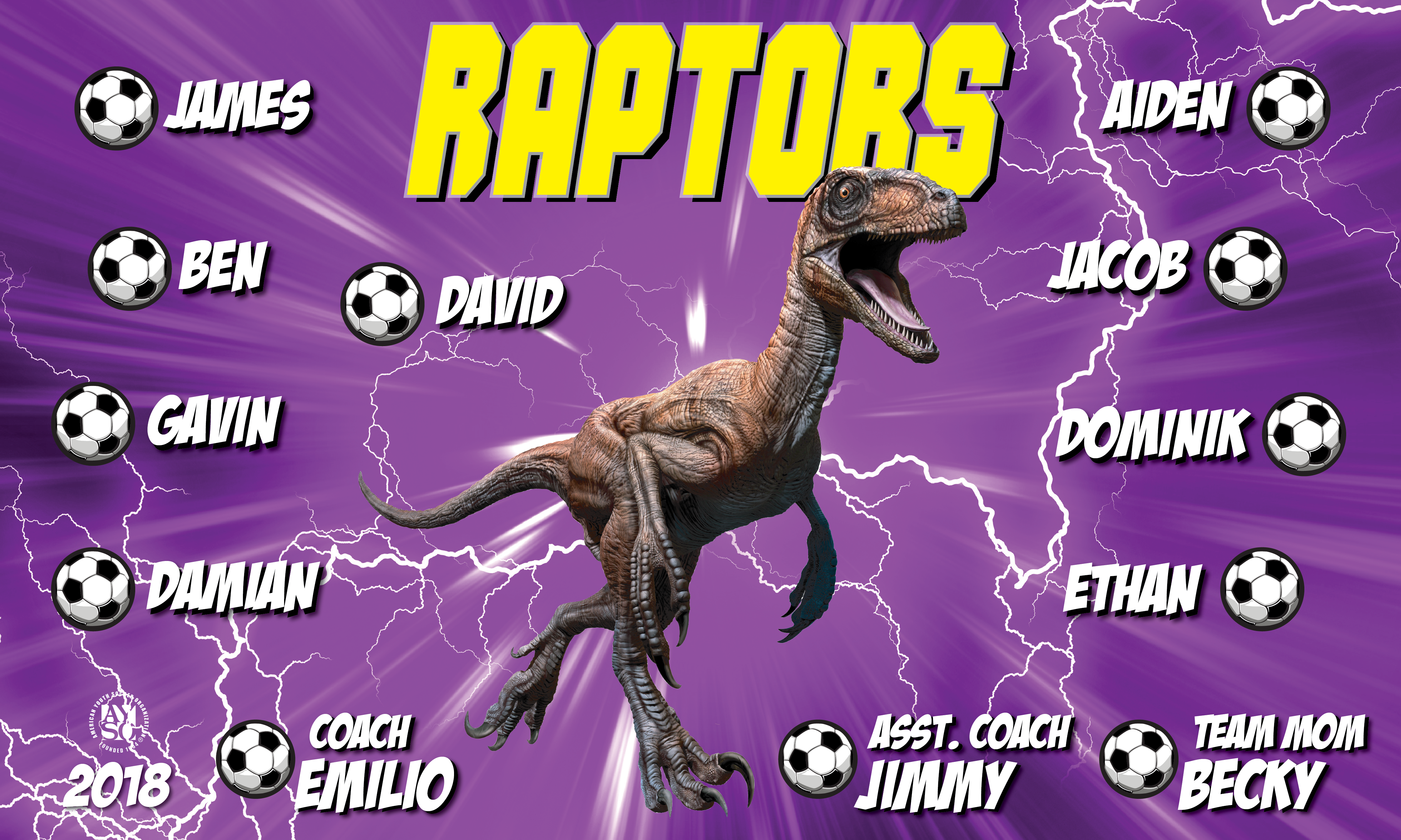 B2584 Purple Raptors 3x5 Banner