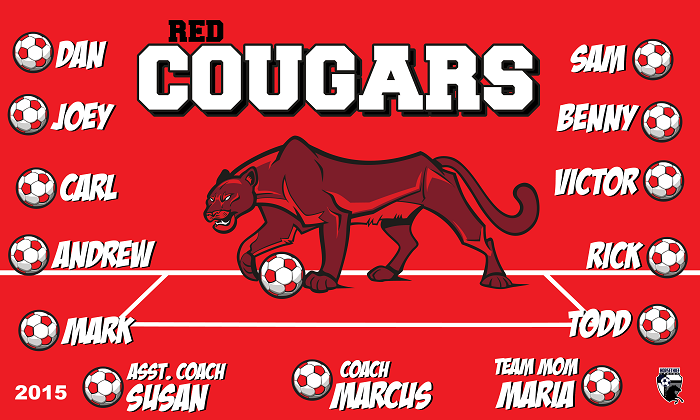 B1504 Red Cougars 3x5 Banner