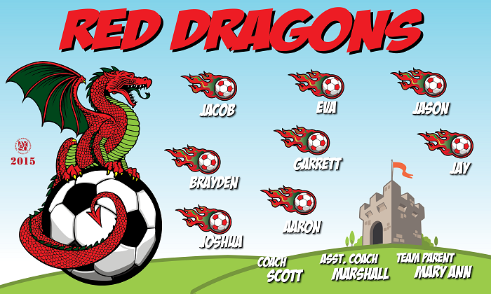 B1317 Red Dragons 3x5 Banner