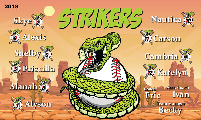 B2184 Snake Strikers Baseball 3x5 Banner