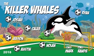B2402 The Killer Whales 3x5 Banner