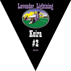 P1023 Lavender Lightning Triangle Pennant