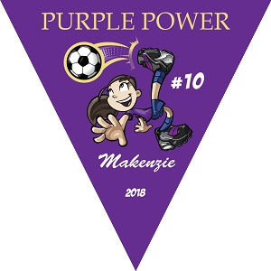 P1029 Purple Power Triangle Pennant