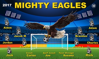 B1746 Mighty Eagles 3x5 Banner