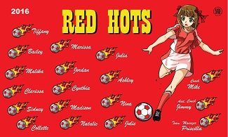 B2008 Red Hots 3x5 Banner