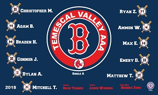 B2192 Boston Red Sox 3x5 Banner