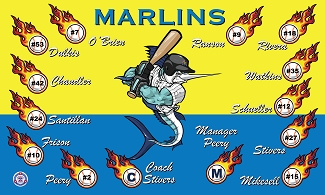 B2268 Marlins Baseball 3x5 Banner