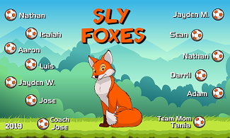 B2536 Sly Foxes 3x5 Banner