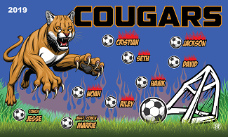 B2620 Cougars 3x5 Banner