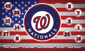 B2667 Washington Nationals 3x5 Banner