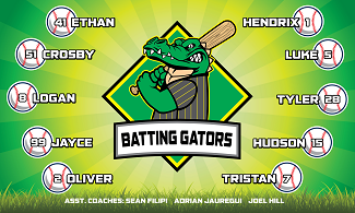 B2675 Batting Gators 3x5 Banner