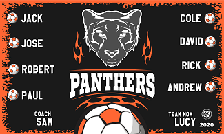 B2683 Panthers 3x5 Banner