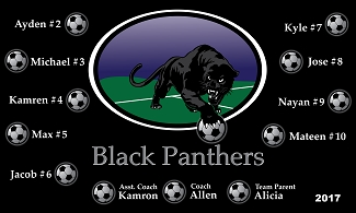 B2134 Black Panthers 3x5 Banner