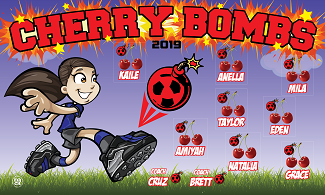 B2604 Cherry Bombs 3X5 Banner