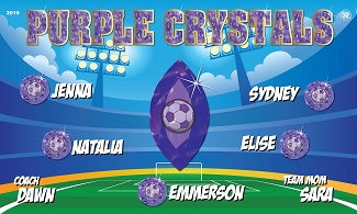 B1727 Purple Crystals 3x5 Banner
