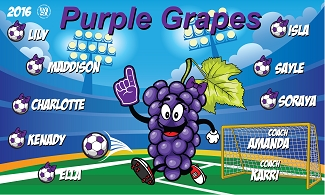 B1853 Purple Grapes 3x5 Banner