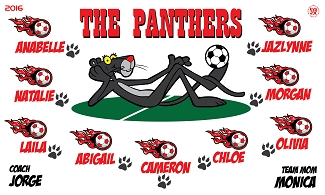 B2262 The Panthers 3x5 Banner