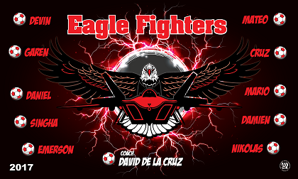 B2159 Eagle Fighters 3x5 Banner