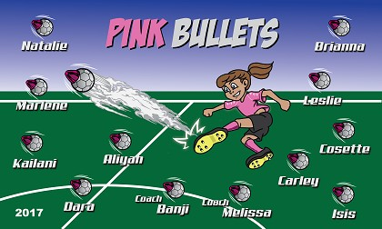 B2074 Pink Bullets 3x5 Banner