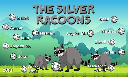B2539 The Silver Racoons 3x5 Banner