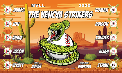 B2678 The Venom Strikers 3x5 Banner