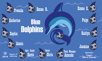 B1019 Blue Dolphins 3x5 Banner