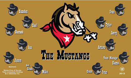 B1119 The Mustangs 3x5 Banner